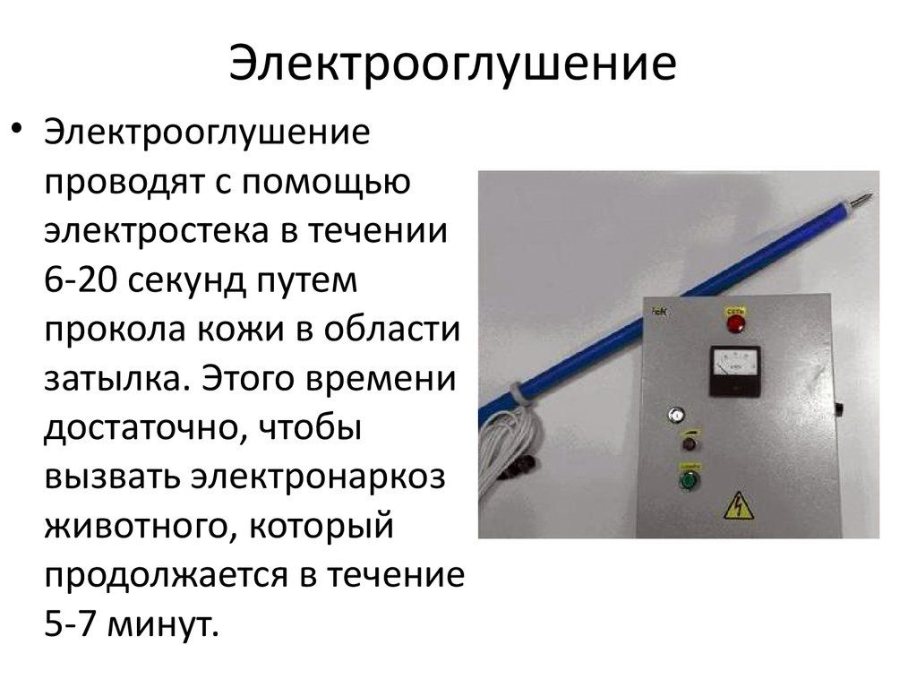 Электрооглушение