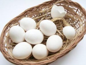Яйцо Брекель