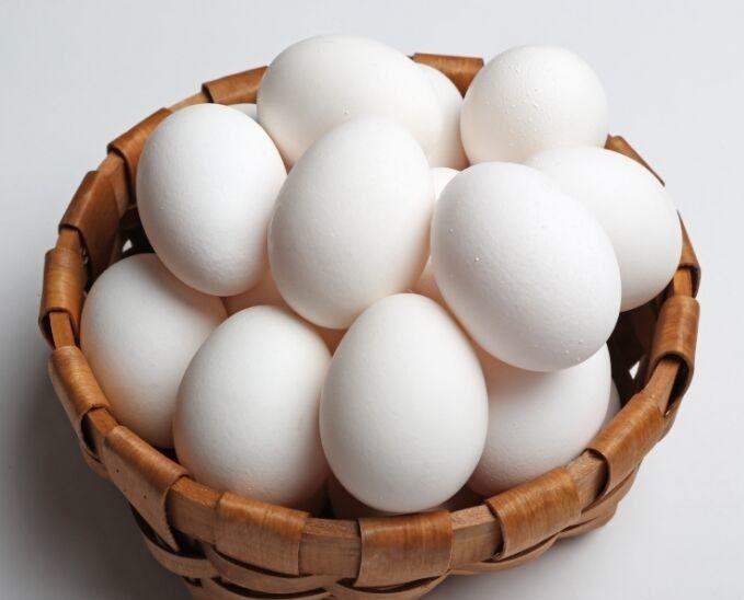 Яйцо гамбургской курицы имеет белоснежную скорлупу