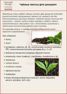 Чайные листья для шиншилл