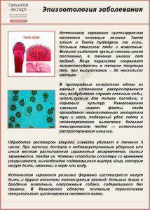 Эпизоотология заболевания