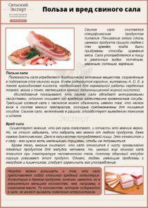 Польза и вред свиного сала