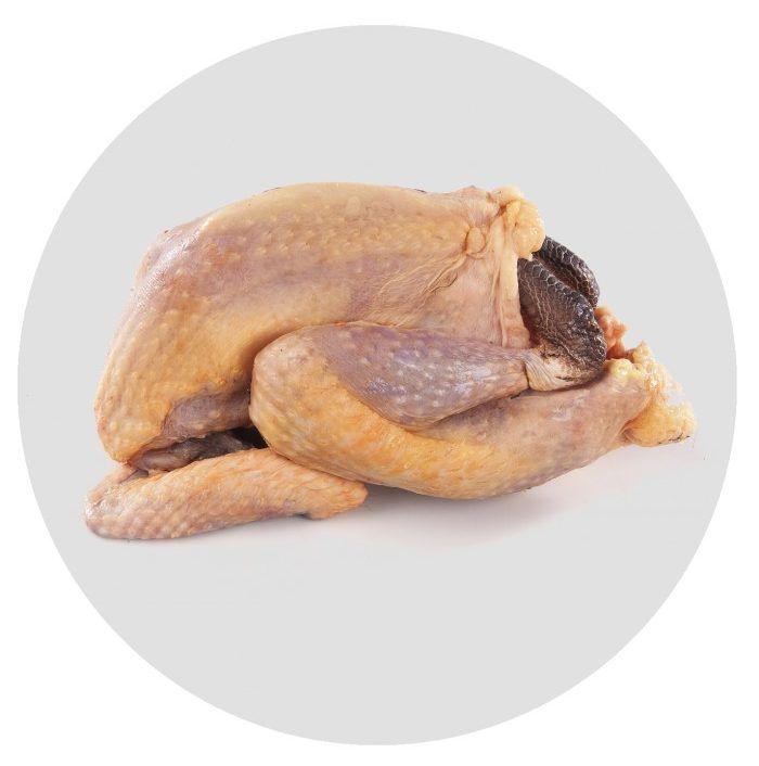 Тушка птицы имеет характерный сизоватый оттенок