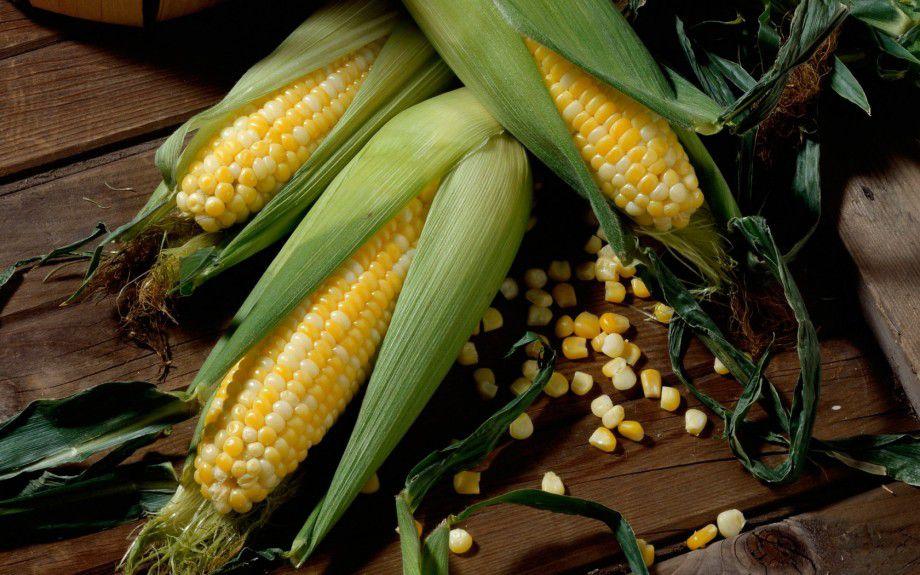 В случае ожирения кур необходимо посадить на диету с содержанием кукурузы и зелени