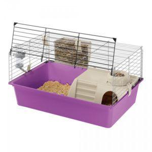 Вольер для родов должен быть небольшим, но удобным и безопасным. При необходимости можно использовать клетку для хомяков или морских свинок
