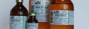 Ивермектин – один из наиболее распространенных противопаразитарных препаратов