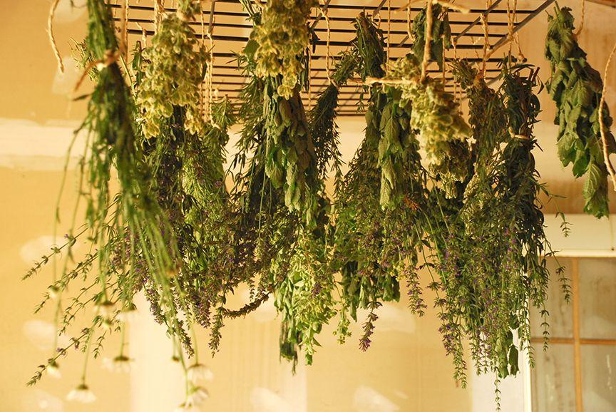 Воздушный способ сушки травы