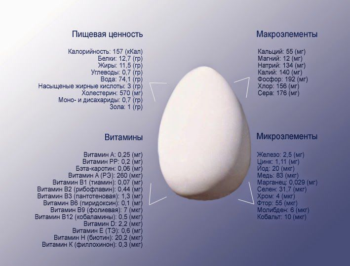 Химический состав яйца