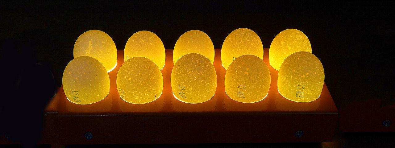 Осмотр яиц с помощью овоскопа