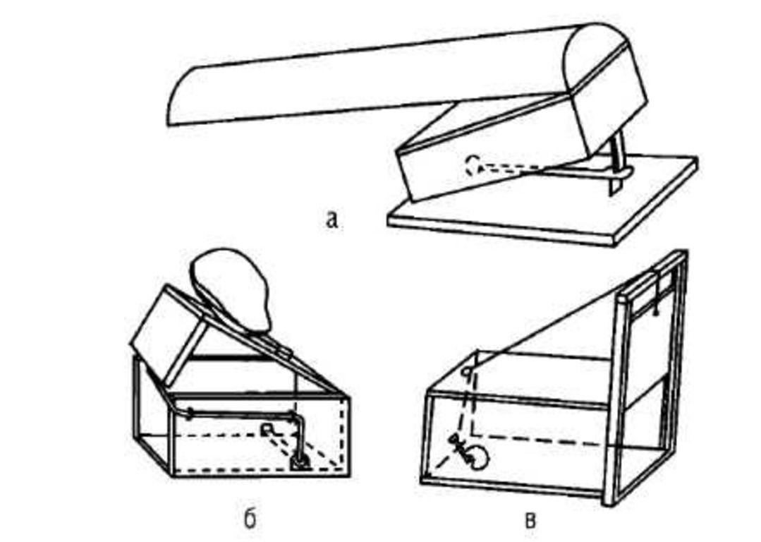 Схема постройки живоловушки своими руками