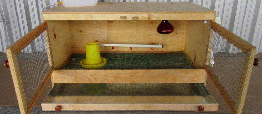 Готовый брудер для перепелов (открытый)