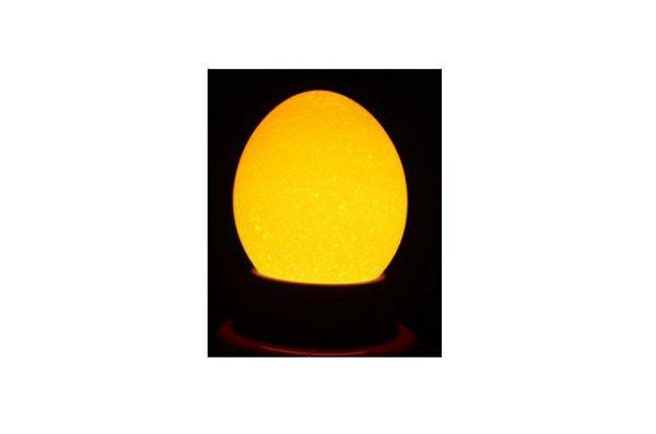 Изображение пустого яйца (овоскопия)