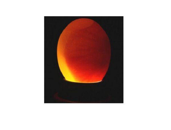 Изображение нормального яйца при овоскопии