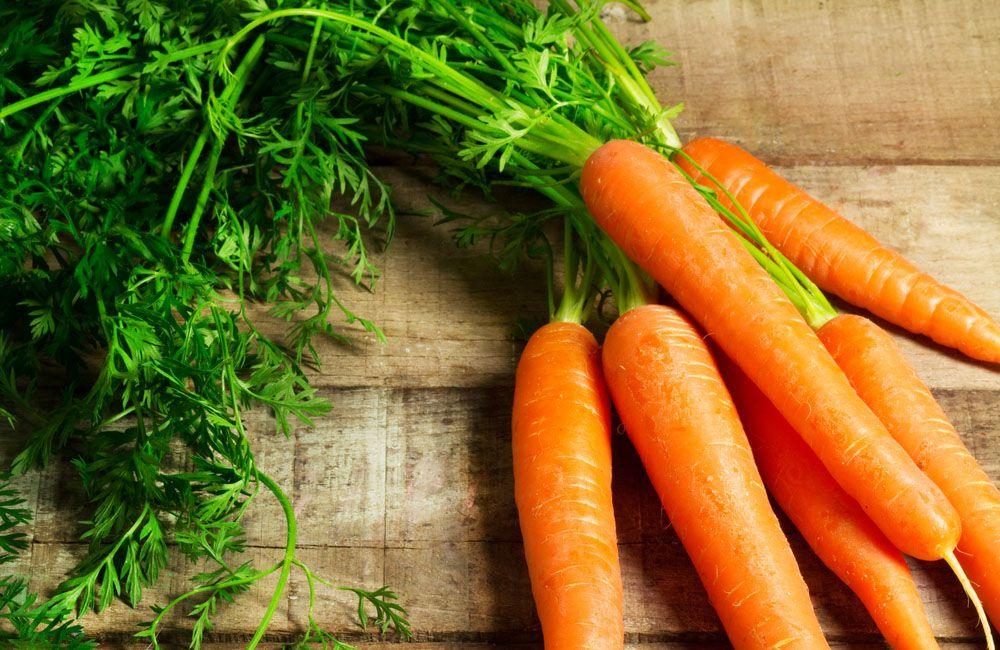 Морковь следует давать кролику в качестве лакомства