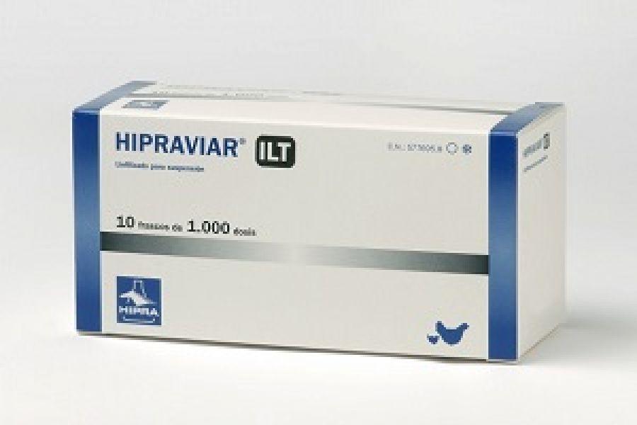 Одна из живых вакцин, применяемых при прививании птиц от ИЛТ