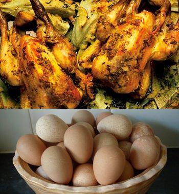 Тушки и яйца цесарок - диетический деликатес