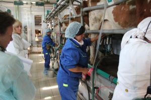 Работники должны быть снабжены спецодеждой