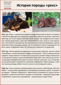 История появления кроликов рекс