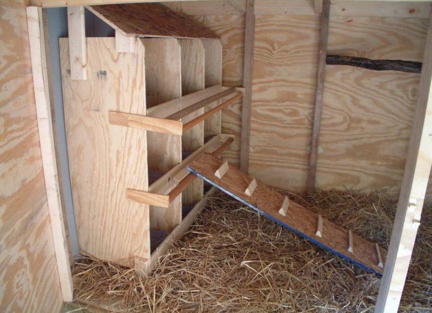 Внутренний интерьер гусятника с гнездами
