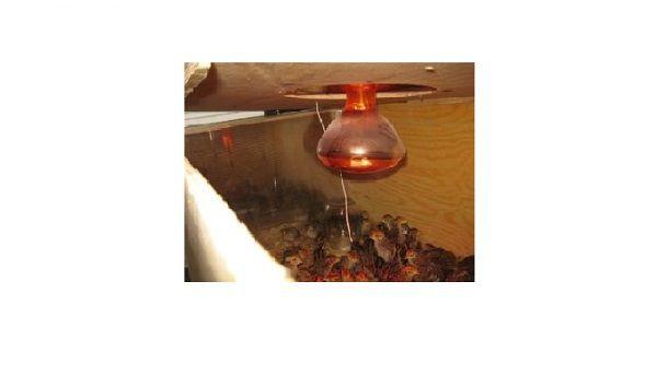 Вид готового отверстия под лампочку