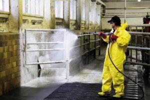 Перед использованием экоподстилки в помещении проводится уборка и дезинфекция