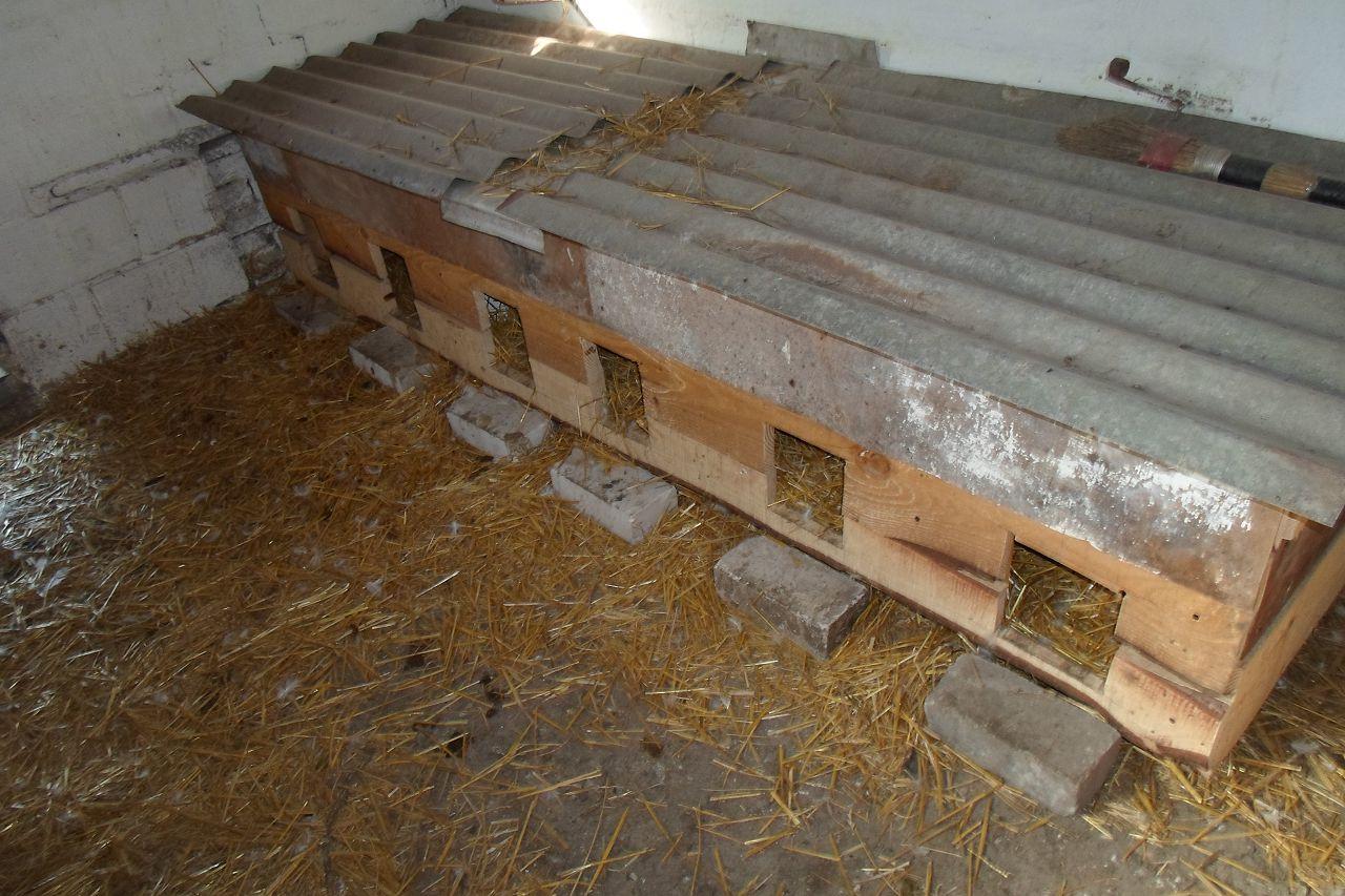 Если в птичнике бетонный пол домики для высадки необходимо поднять и дополнительно утеплить в них пол