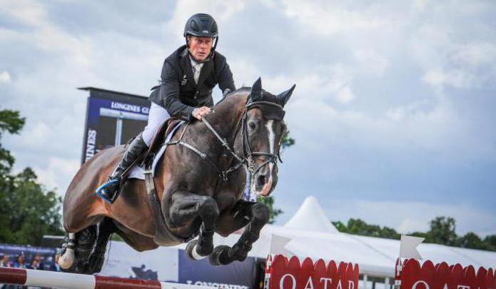В результате скрещивания с йоркширскими каретными, голштинские лошади стали более резвые