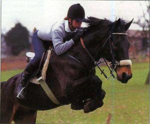 Кабардинская порода лошадей на скачках