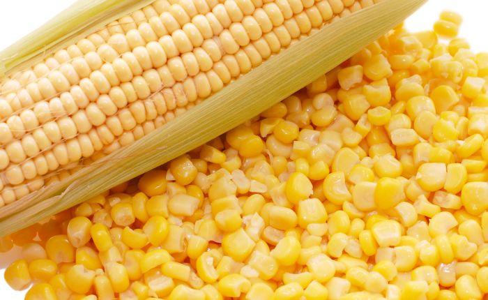 При приготовлении смеси самостоятельно в качестве зерна подойдет кукуруза