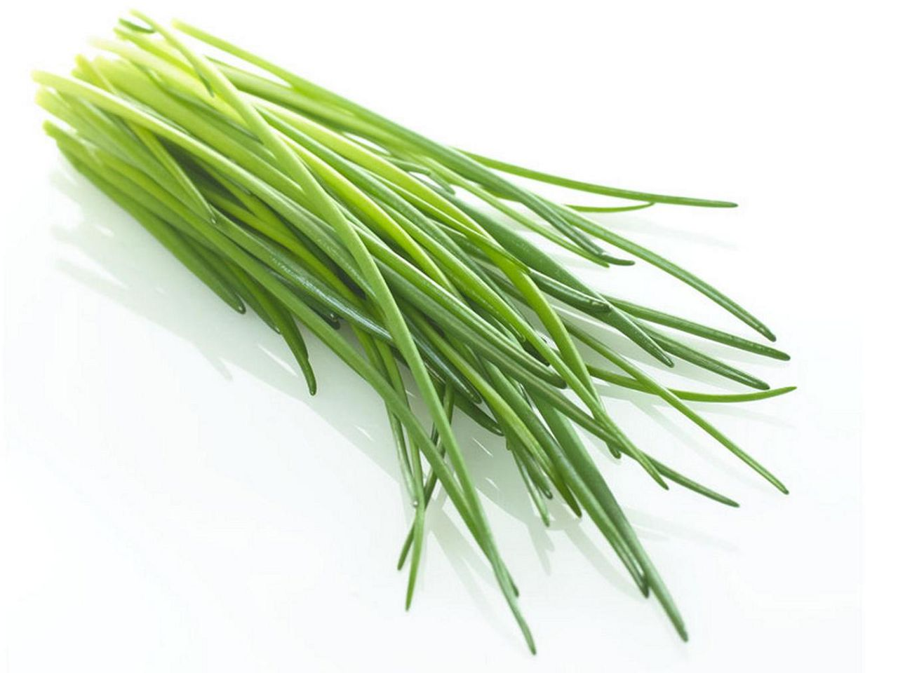 Перья зеленого лука