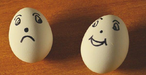 Все ли яйца подходят для инкубации?