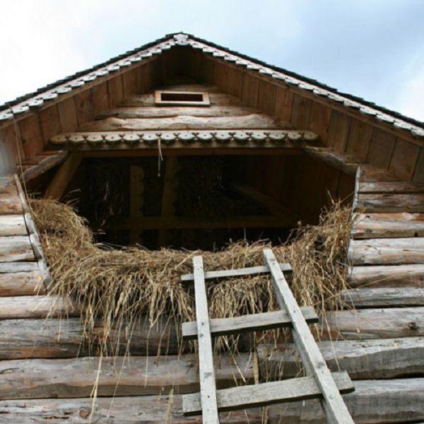 Если чердак конюшни будет использоваться под сеновал, необходимо сделать укрепленный потолок способный выдержать нагрузки