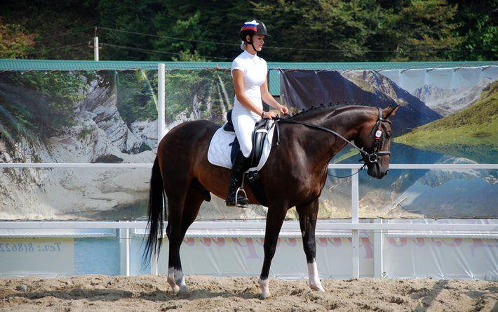 Тренировки спортивных лошадей влияют и на их рацион