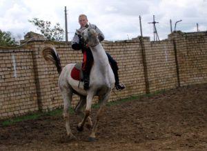 Агрессивная лошадь плохо управляема