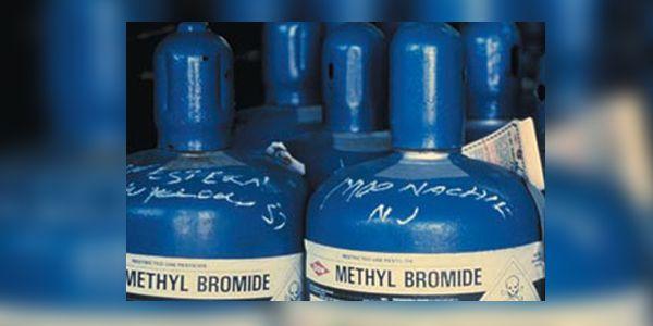Бромистый метил применяют для дезинфекции шерсти