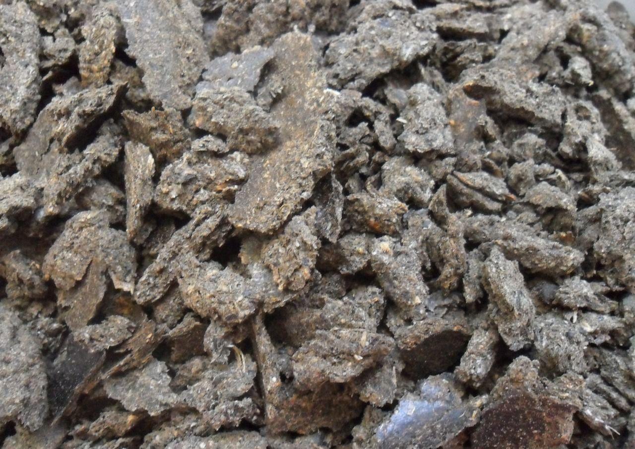 В рацион месячных гусят полезно добавлять жмых
