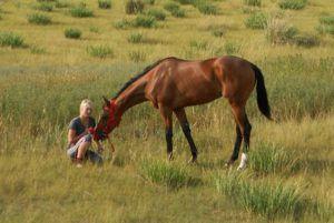 Знакомство с лошадью и эмоциональный контакт - важный момент обучения