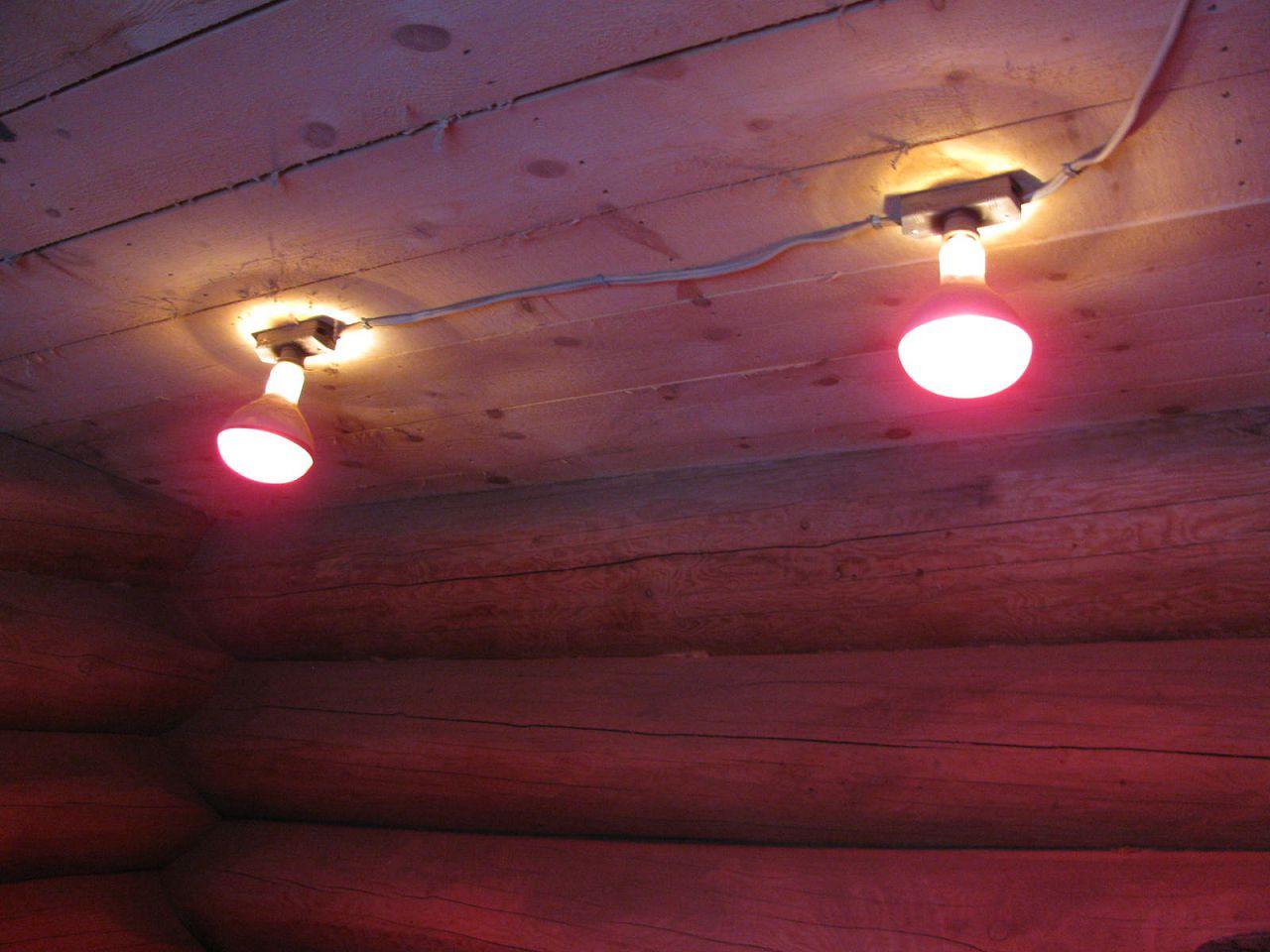 Инфракрасные лампы в курятнике