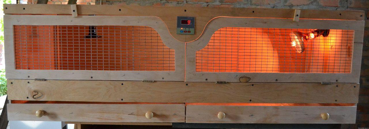 Инфракрасные лампы помогут достичь в птичнике оптимальной температуры