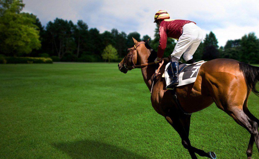 Верховая езда галопом