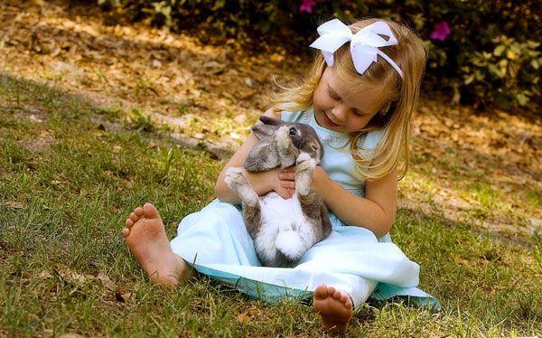 Маленькая девочка, играющая с домашним кроликом