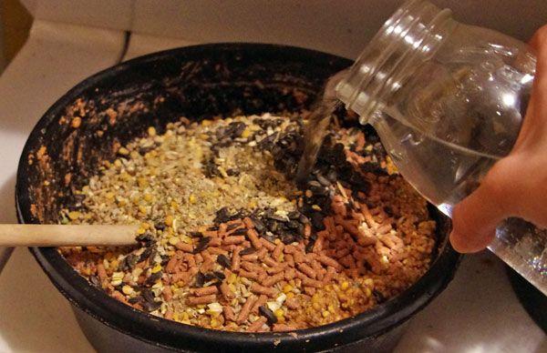 Мешанка для кур вмещает в себя несколько видов пищи со своими полезными веществами