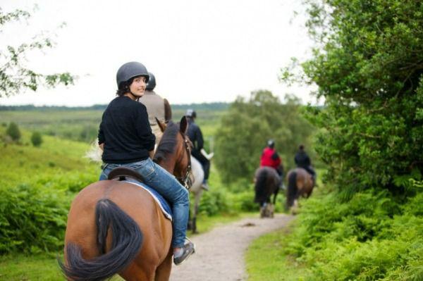 Обкатать лошадь можно без седла, с седлом и специальным видом снаряжения, характерным для некоторых традиционных мастей