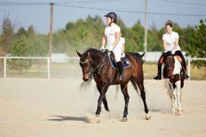 Правила верховой езды помогают снизить физическую нагрузку всадника
