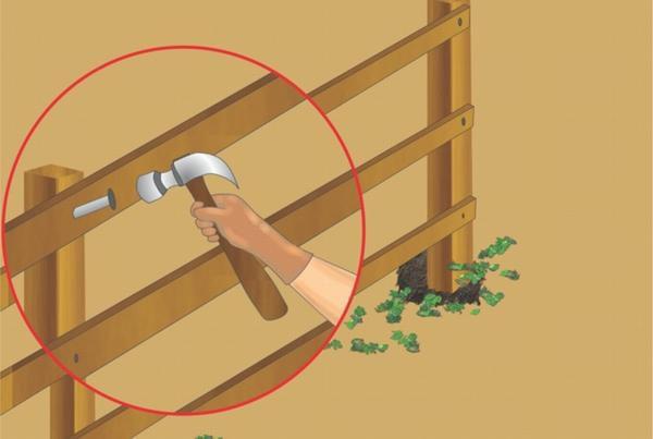 Прожилины располагайте на равном расстоянии друг от друга и на 20-30 см выше уровня почвы