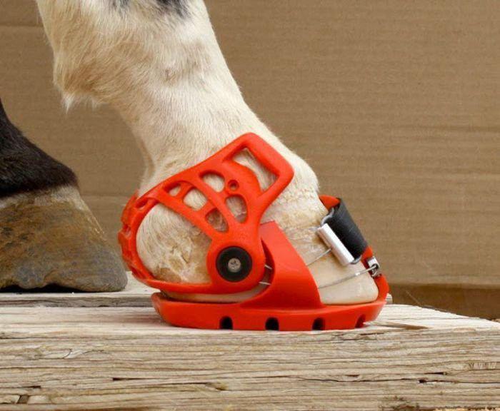 Современные подковы для лошадей