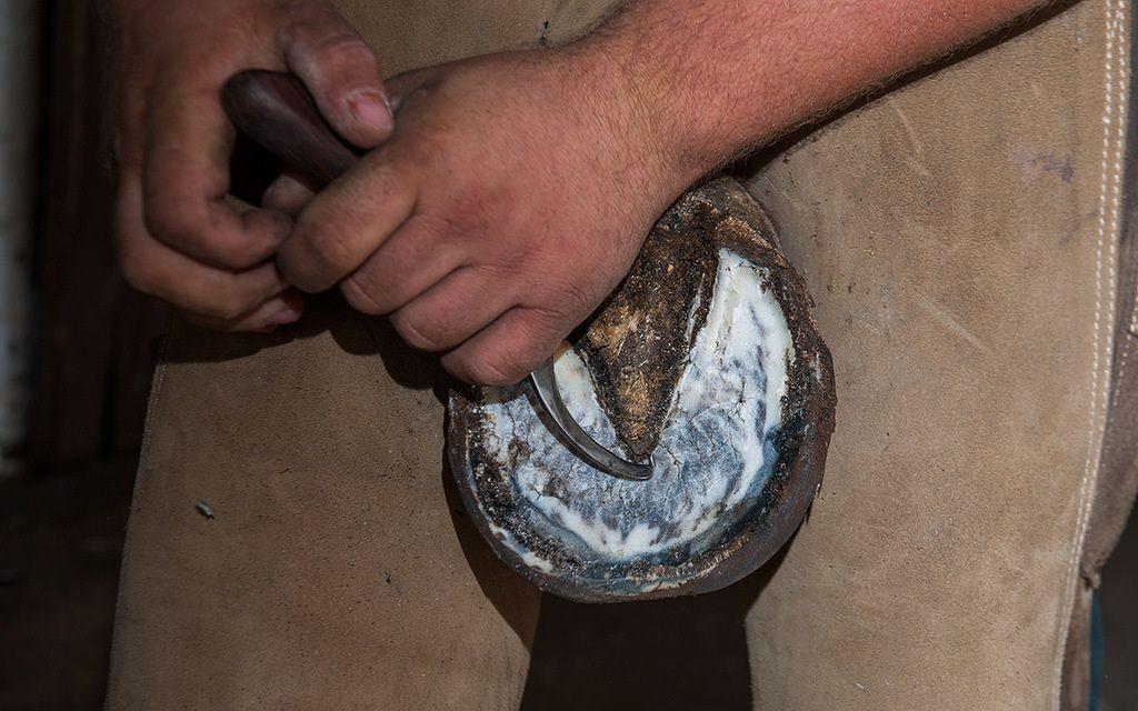 Специальным ножом с закругленным концом кузнец снимает старый слой подошвы