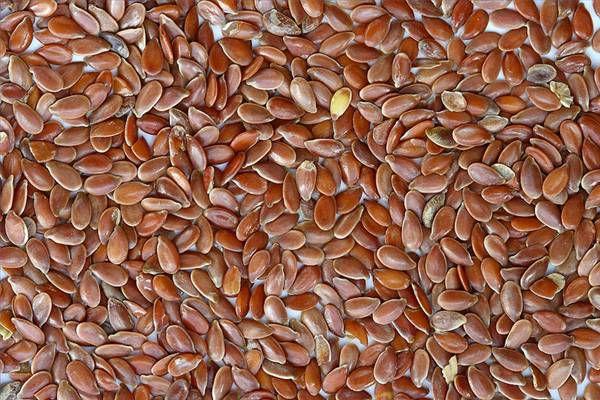 Семена льна для голубей