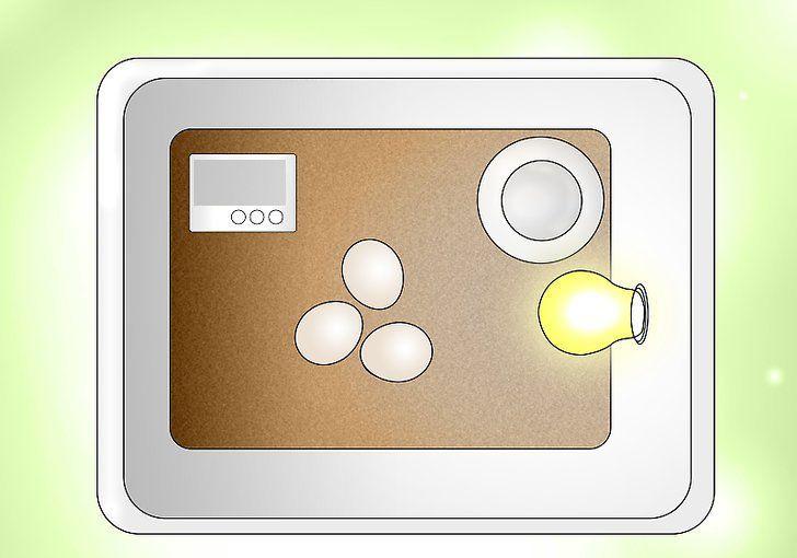 Взвешивание яиц