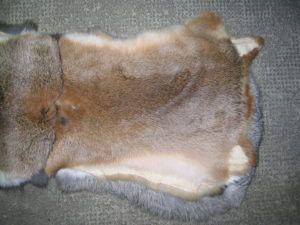 Кроликов забивают не только на мясо, но и для шкуры